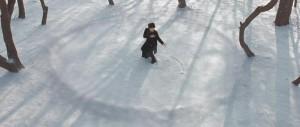 Grandmaster - Zhang snow