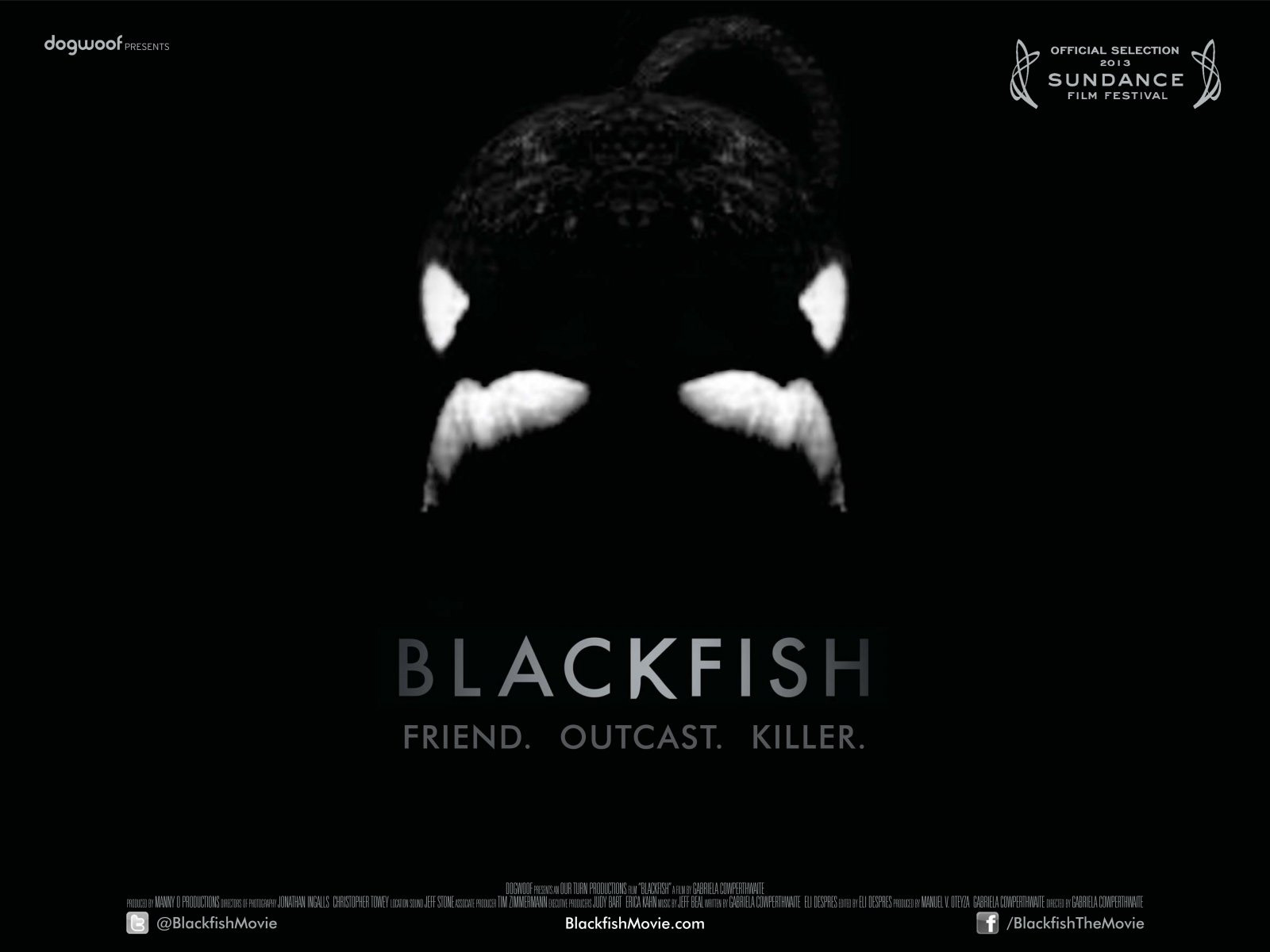 Movie review blackfish electric shadows for Fish sucking penis