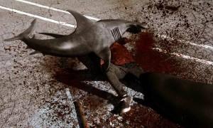 Sharknado - hammerhead attack
