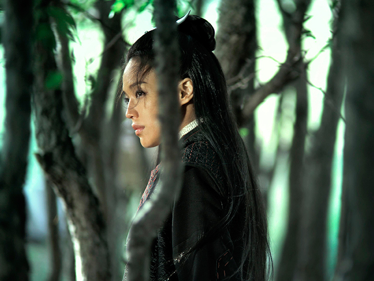 The-Assassin---Shu-Qi,-green-tress